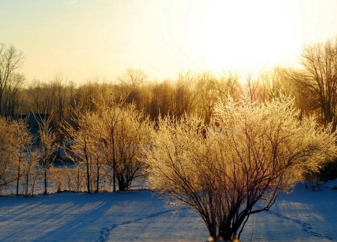 sparkling sunrise 2