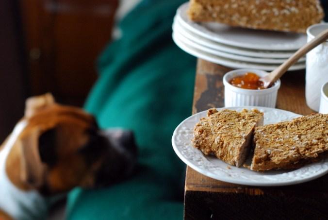 soda bread with dog