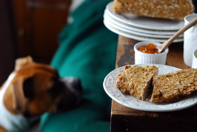 soda bread with dog