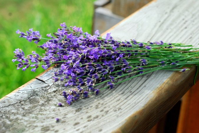 lavender on railing