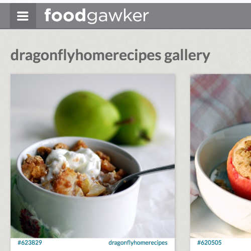 dragonflyhomerecipe.com foodgawker gallery screen shot