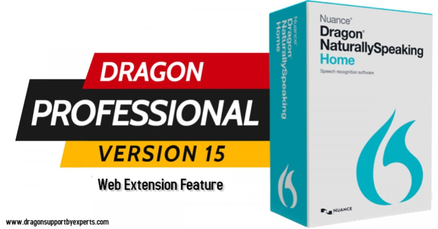 Dragon Naturally Speaking 13 - Web Extension Feature