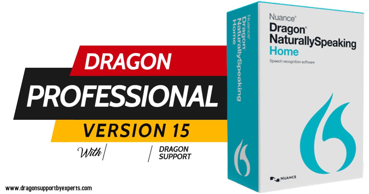 Dragon Professional Individual 15 Review