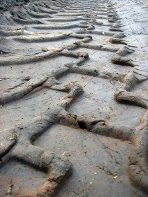 tire-tracks-504470_1280