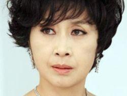 Profil Lengkap Kim Hye Ok