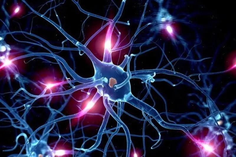 Functional Neurology: Serotonin and Brain Health   El Paso, TX Chiropractor