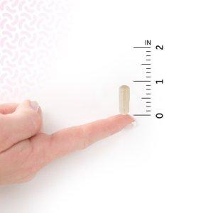 garden of Life Women's Capsule size