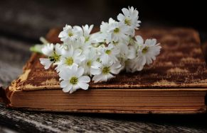 bookandflowers