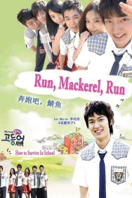 Mackerel Run
