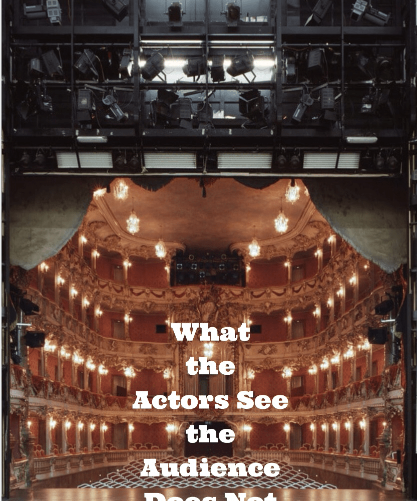 Amazing Photos: What Actors See the Audience Does Not