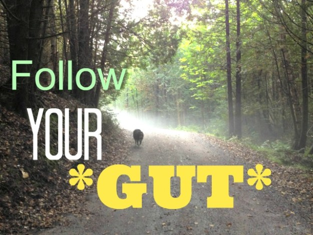 Gut instincts - your gut always knows. www.dramyneuzil.com