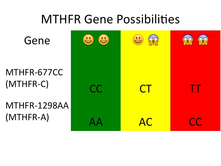 ossible good and bad copies of the MTHFR gene