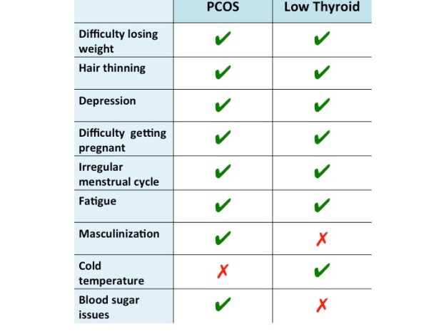 Is it any wonder undiagnosed PCOS is often confused for thyroid dysfunction?