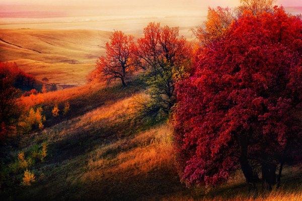 Удивительные и невероятные картинки красной осени - 20 фото
