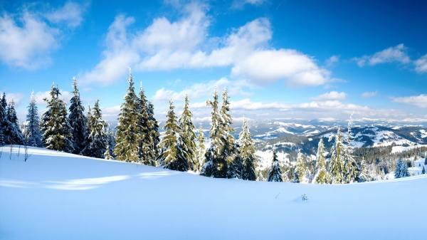 Красивые картинки на заставку про зиму и снег - подборка