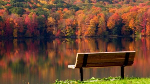 """Красивые широкоформатные обои на рабочий стол """"Осень ..."""
