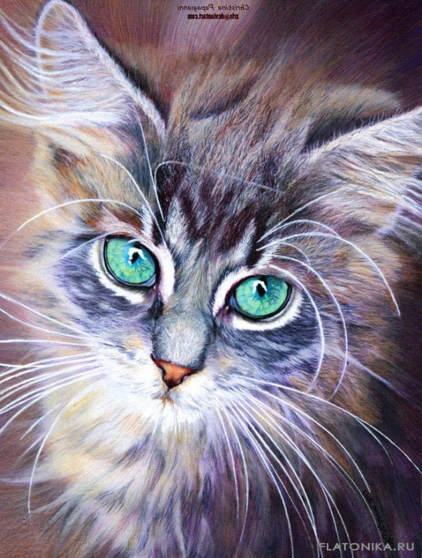 Картинки с котами нарисованными - подборка