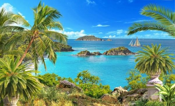 Море пальмы и песок фото и картинки