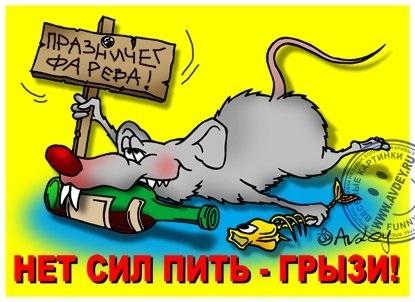 Картинки на тему год крысы - скачать бесплатно