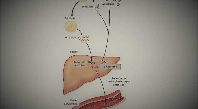 Cetose, dietas cetogênicas e cetoacidose diabética