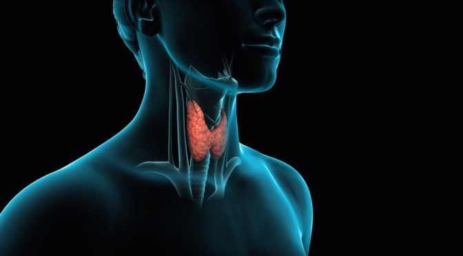 Vigilância ativa no câncer de tireoide