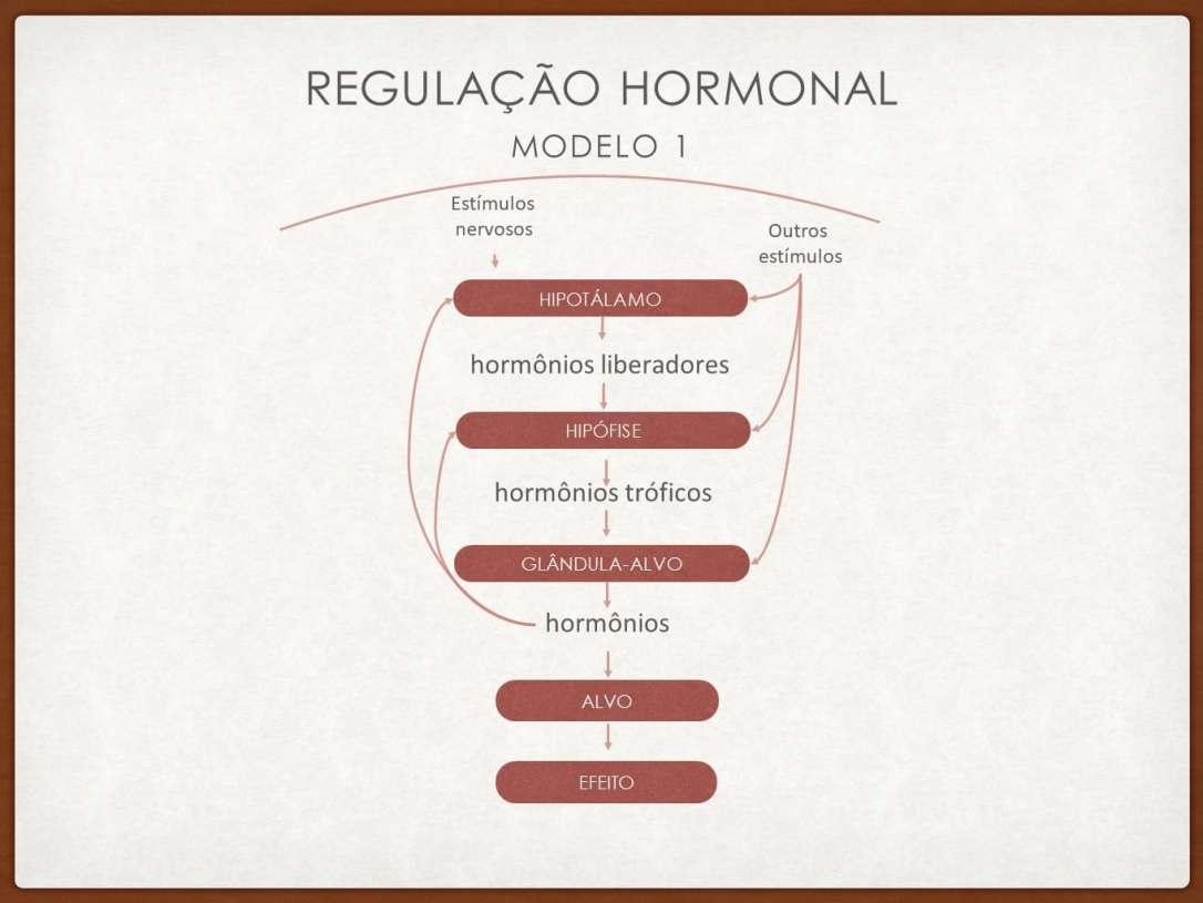 modulacao_hormonal