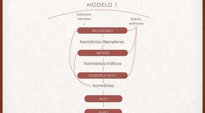 Modulação hormonal, regulação e eixos