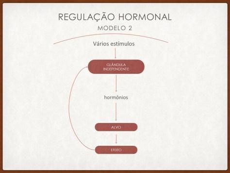 Modelo 2 de regulação hormonal