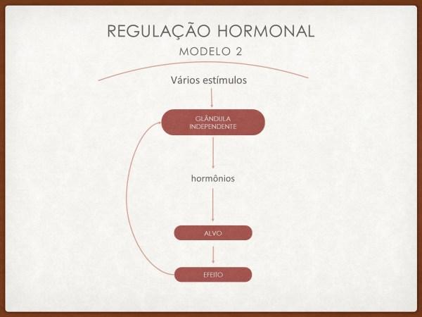 Modulação hormonal 2