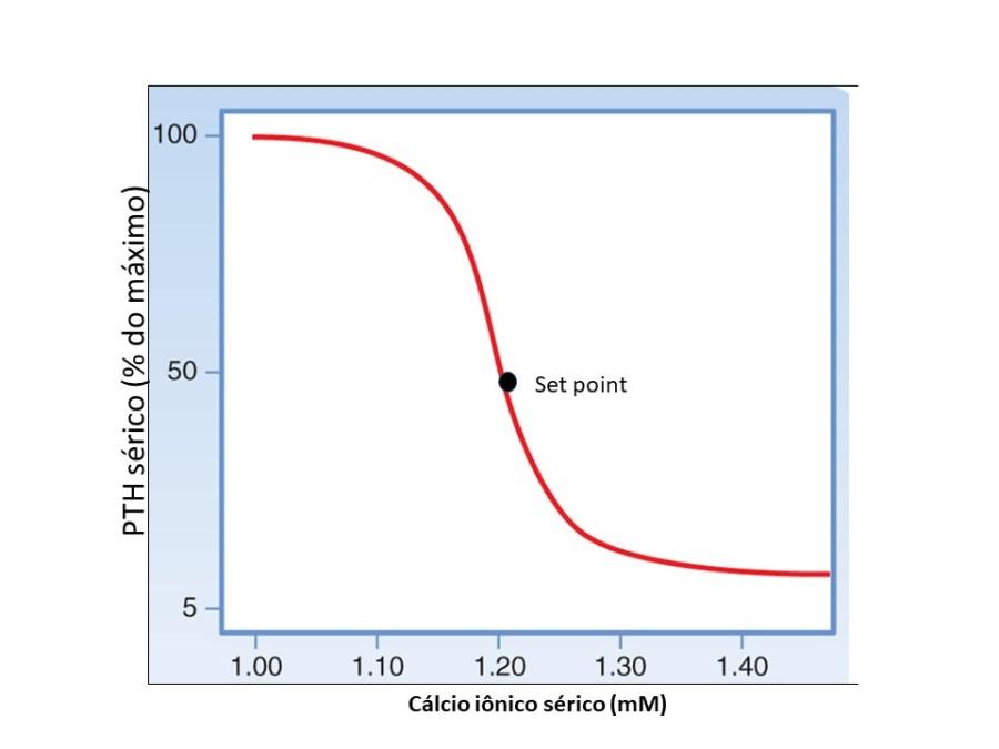 Curva de secreção do PTH em relação ao cálcio sérico. Quanto menor o cálcio, maior seria a secreção de PTH