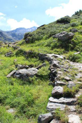 Sanftes Almgelände am Stubaier Höhenweg