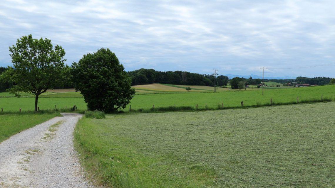 Wanderung von Starnberg nach Wolfratshausen