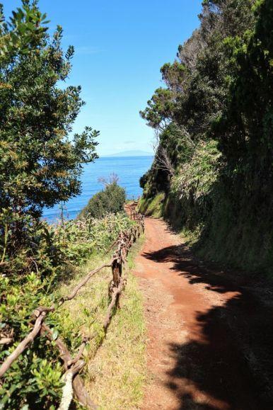 Küstenwanderung Sao Jorge (1)
