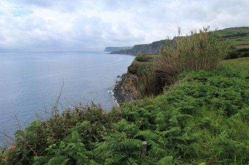 Wanderung bei Ribeirinha, Faial (1)