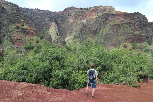Waimea Canyon (11)