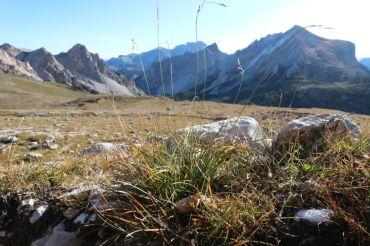 Kitzbühler Alpen im Herbst