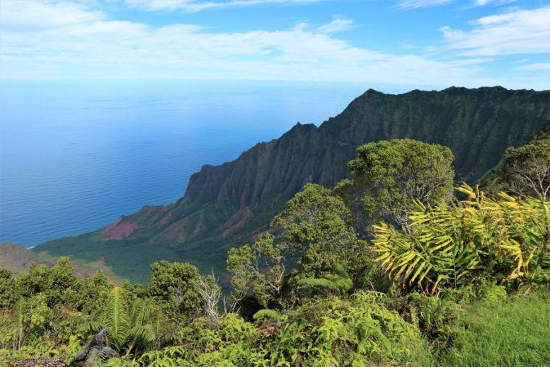 Pihea Trail Hawaii (1)