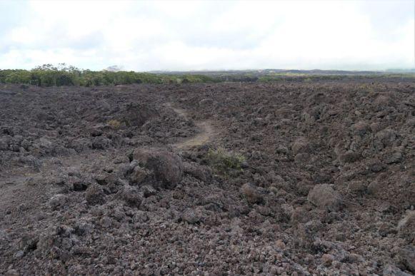 Puu Oo Trail Hawaii (5)