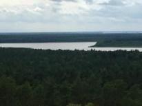Blick über den Müritz Nationalpark
