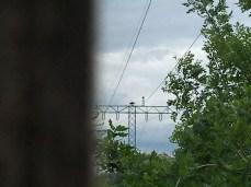 Das Fischadler-Nest mit Kamera in Federow