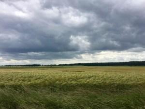 Mecklenburger Landschaft bei Wamckow