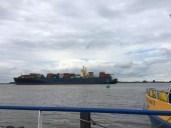 Am Fähranleger Lühe an der Elbe