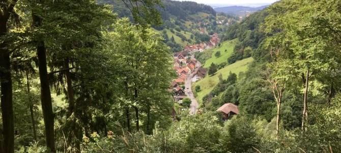 """Der Harz: Märchenwald oder """"Little Canada""""? Ein paar Impressionen."""