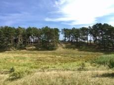 Landschaft auf der Südspitze der Halbinsel Gnitz