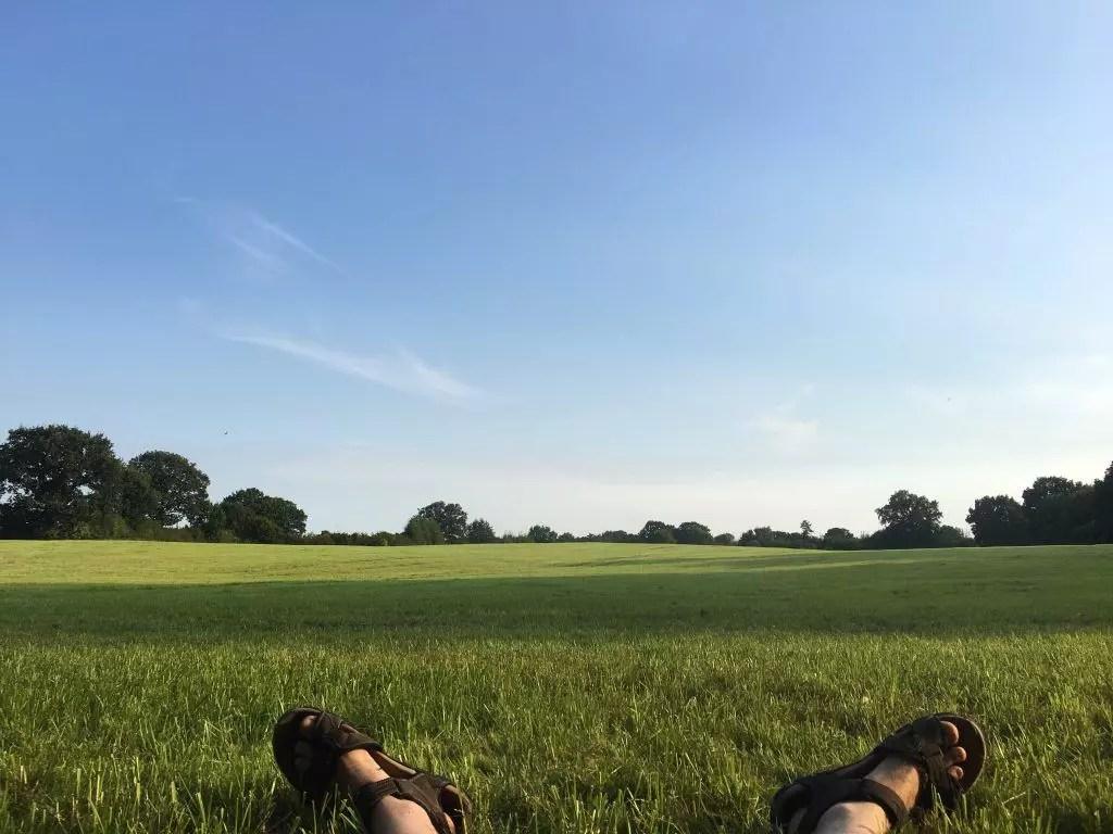 Fahrradtour im Kreis Stormarn: Durch die Hahnheide und an den Großensee