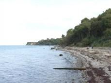 Wilder Naturstrand an der Ostsee