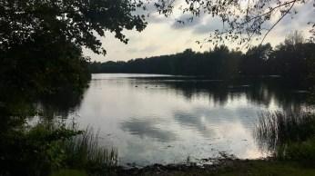 Idylle am Hummelsee in Hamburg