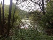 Kleiner See am Alsterlauf in Klein Borstel
