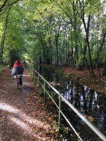 Radweg am Naturschutzgebiet Rothsteinsmoor