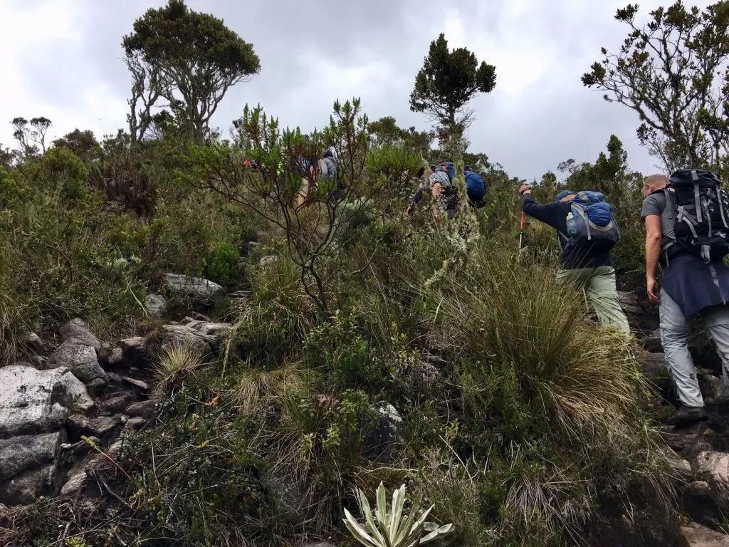 """Wandern in Kolumbien: Aufstieg zur heiligen Lagune """"Iguaque"""""""